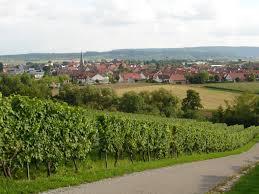 Resultado de imagen de brackenheim